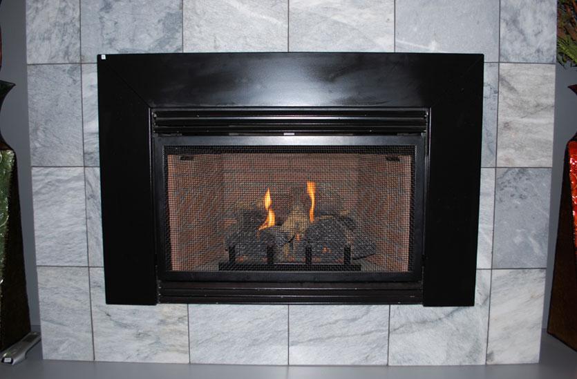Reliance Fireplace Insert